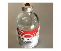 Compre Nembutal Pentobarbital en línea