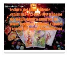 Lectura  del tarot en Bogotá 57 3124935990 whatsapp amarres de amor