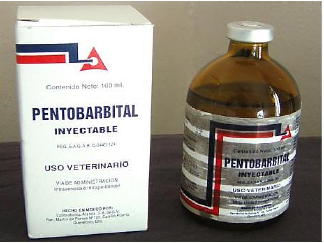 Muerte de especies con Nembutal para uso humano y veterinario