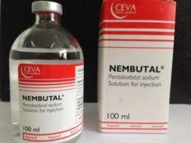 Compra Nembutal sin receta para uso humano y veterinario