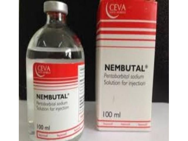 Medicamento que acaba con la vida nembutal pentobarbital sódico